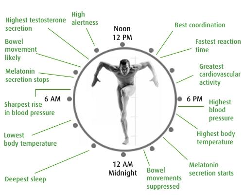 Cr4 Thread Daylight Saving Time Disrupts Humans