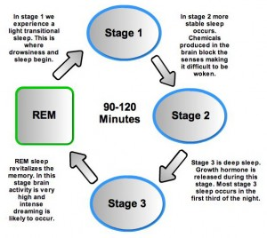 Sleep Mystery – You Get Dream At REM But Nightmares At Non REM Sleep Cycle