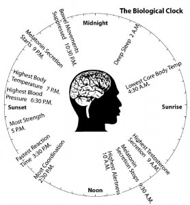 Circadian Rhythm Sleep Disorder Can Be Temporary Or Chronic In Nature