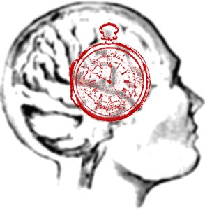 How Environmental Cues Affect Your Circadian Clock?