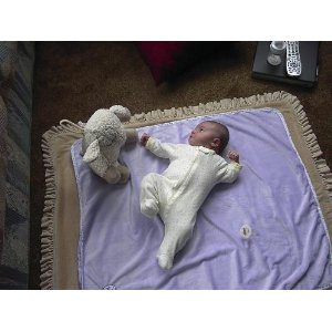 Cloud B Sleep Sheep Four Soothing Sounds From Nature For Treating Sleep Disorders In Infants