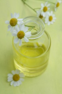 What Is the Maximum Number of Drops of Chamomile Essential Oil a Person Should Use for Sleep Disorders.jpg