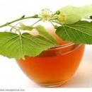 Health Benefits Of Linden Flower Tea