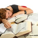 Herbal Remedies for Hypersomnia
